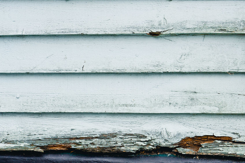 Do I Need to Worry about Siding Rot in the Winter?